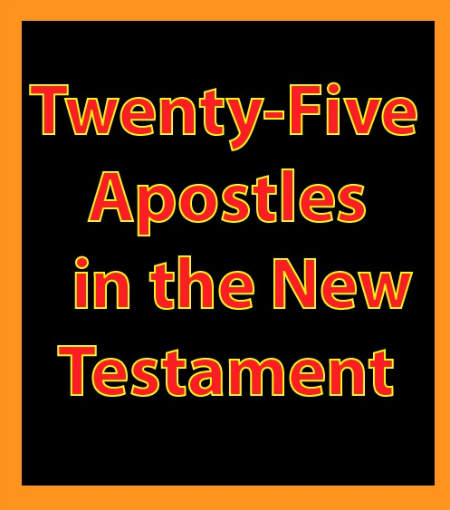 Twenty-Five Apostles in the New Testament: eBook